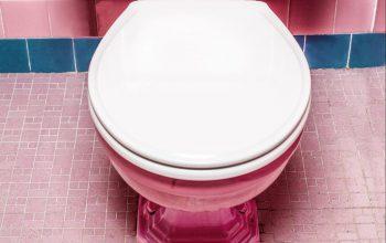 Dies ist kein Toilettenhumor. Dies ist purer Ernst. – Kids'itate